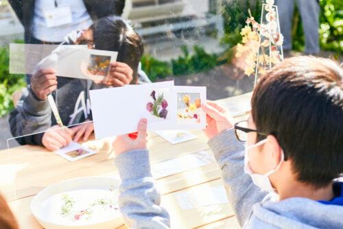 茨城県フラワーパークが「いばらきフラワーパーク」にリニューアル